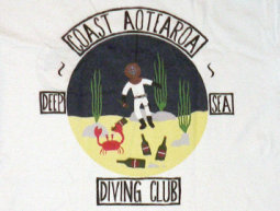Coast Apparel Dive Tee